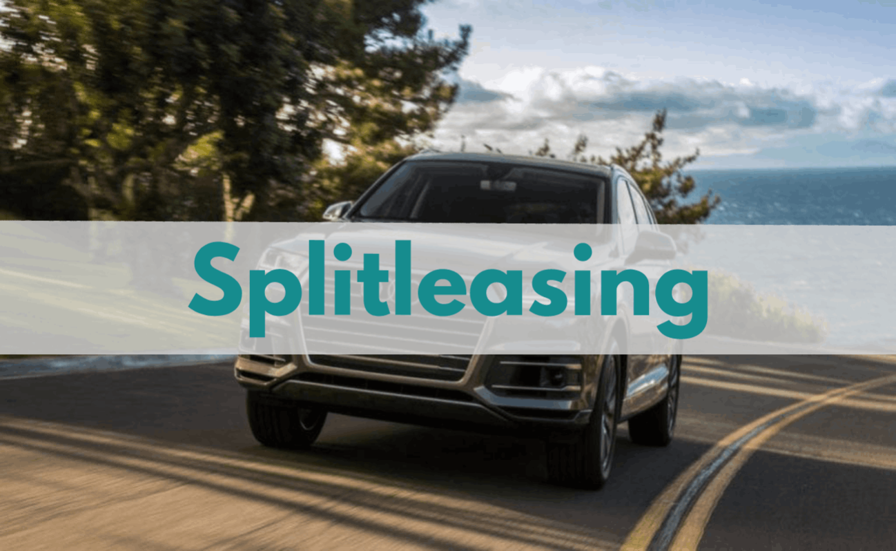 leasingformer splitleasing splitleasing danmark splitlease flexlease nu flexlease.nu